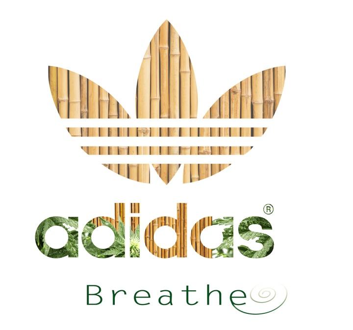 Adidass